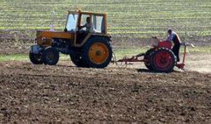 Agricultural Land In Bulgaria Costs Between 200 and 300 Leva/Decare