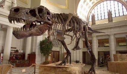 Часовник от изпражнения на динозавър струва 8 хил. евро