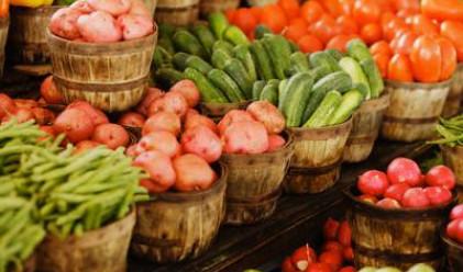 По-скъпи краставици и зеле, доматите с 8% по-евтини