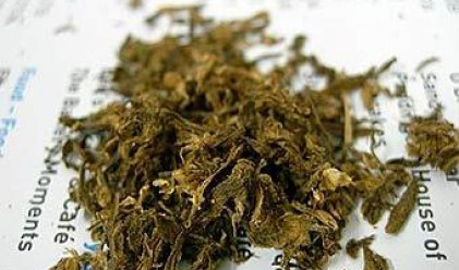 Хлебарница получи близо 300 кг марихуана