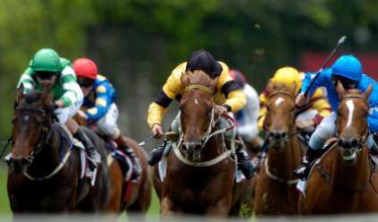 Британец спечели 1.4 милиона лири на конни залагания