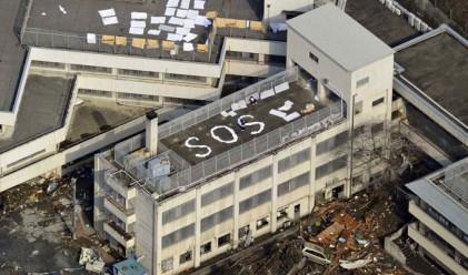 Земетресението в Япония в снимки