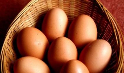 Лъжат ни и с яйцата, твърдят производители