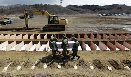 Япония две седмици след земетресението