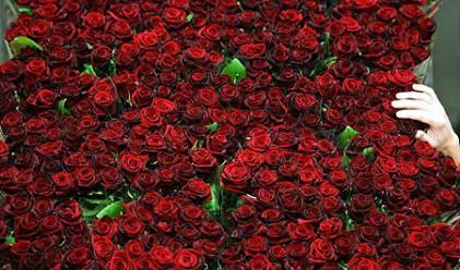 Най-романтичните изненади за 8 март
