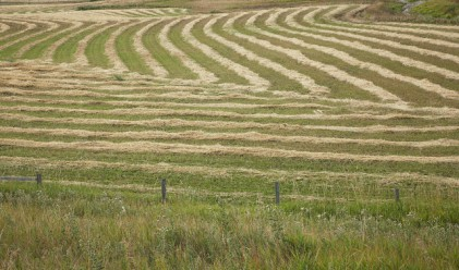 Оживление на пазара на земеделска земя през март