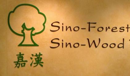 Sino-Forest подаде заявление за фалит