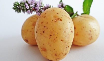 Шест изненадващи храни, които могат да ви разболеят