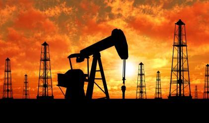 Петролът отново при 41 долара за барел