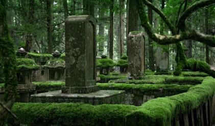 В най-голямото гробище в Япония почиват над 200 000 души
