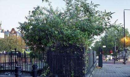 Изоставените обществени тоалетни на Лондон