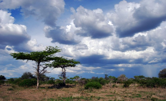 10 застрашени ЮНЕСКО обекта, които да посетим