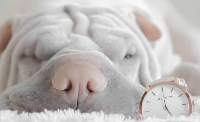 Най-вредните неща, които правим преди сън