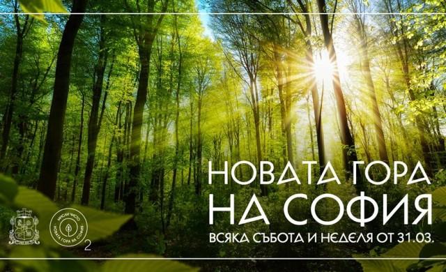 Днес стартира вторият залесителен сезон на Новата гора на София
