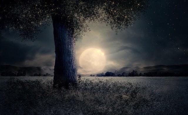 Как ще живеем, ако се заселим на Луната?
