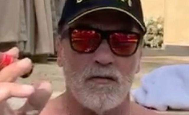 Домашната тренировка на 72-годишния Арнолд Шварценегер
