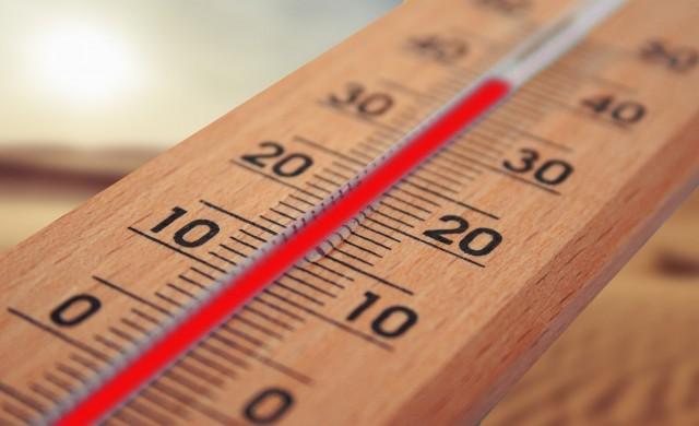 Изминалата зима е най-топлата в историята на Северното полукълбо