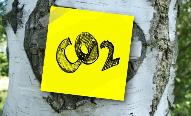 Какво се случва на най-големия пазар на въглеродни квоти в света?