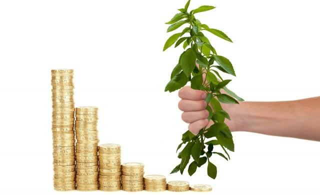 Над 50 родни фонда с доходност от над 10% за година