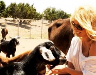 Памела Андерсън се сбогува с Калифорния. Връща се в Канада