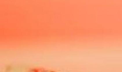 Печалбата на ТК Холд се понижава до 191 хил. лева през първото тримесечие