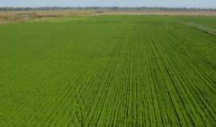 МЗГ разработва варианти за развитие и управление на поземлените отношения върху земите