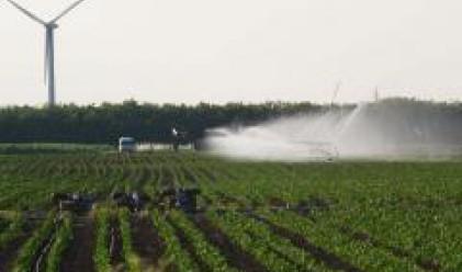 Сертифицираните площи за биологично земеделие у нас са 166 741 хектара