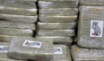 Перу произвежда 28% от кокаина в света