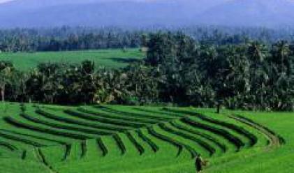Прием на документи по програмата за развитие на селските райони от 17 април