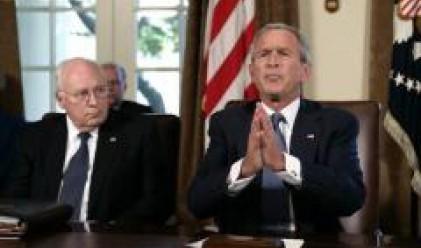 Доходите на Буш - четири пъти по-малко от Чейни