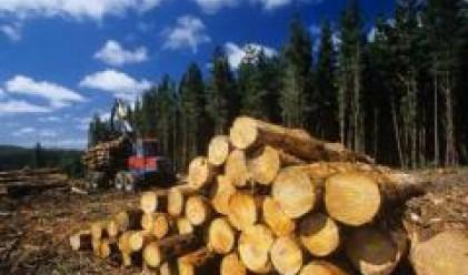 Алфа Ууд България набра 12.1 млн. лв. от увеличението на капитала