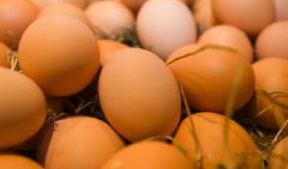 Яйцата поскъпнаха с 5% по Великден