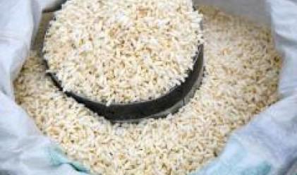 Израелски супермаркети въвеждат дажбена система за ориза