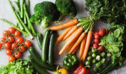 Застрахователи покриват загуби на зеленчукопроизводители