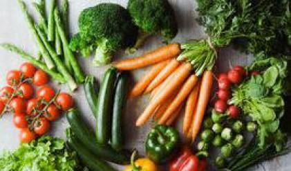 Отпускат кредити за производство на домати и пипер