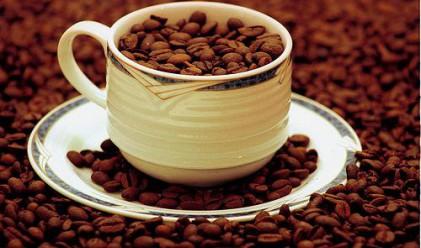 Куба става вносител на кафе