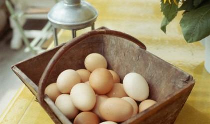 10 дни преди Великден: яйцата поевтиняват, агнешкото поскъпва
