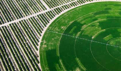 Фондове държат хиляди декари земя