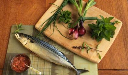 Магазините ни пълни с риба от Фукушима