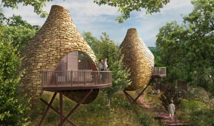 Удивителна колония от къщи на дърво за връзка с природата