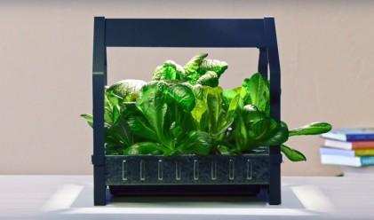 IKEA предлага  градини, в които да отглеждате храна целогодишно