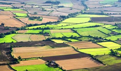 Земеделската земя поскъпна и през 2015 г.