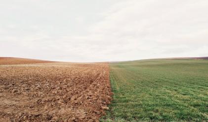 Областите с най-скъпи земеделски земи