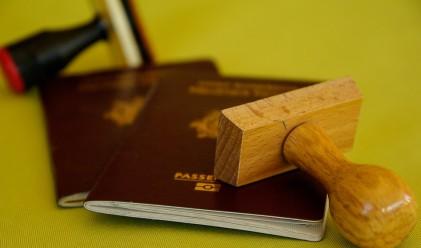 Какво означава цветът на паспорта?