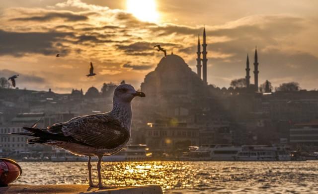 Ердоган води на референдума, но губи Истанбул (обновена)