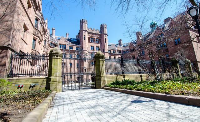Кои са най-желаните специалности в топ университетите по света