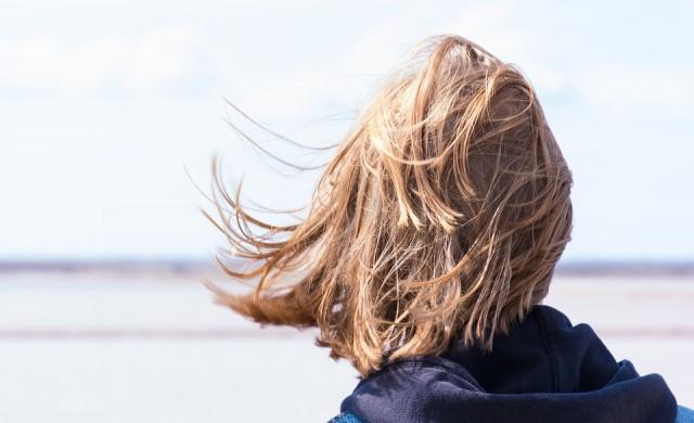 Жълт код за бурен вятър е в сила за 17 области
