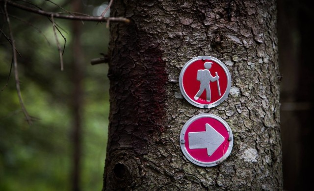 Защо е препоръчително бизнесмените да изкачват планини