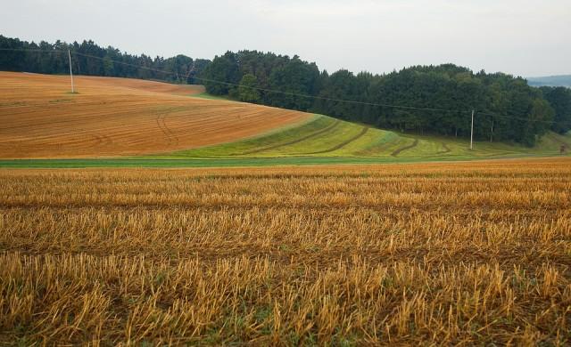 Какви са покупните цени на земеделската земя в различните области