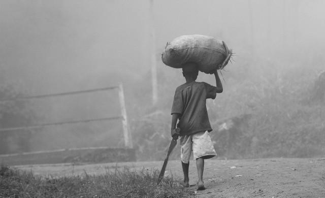 Африканско земеделие: Много земя, малко хора